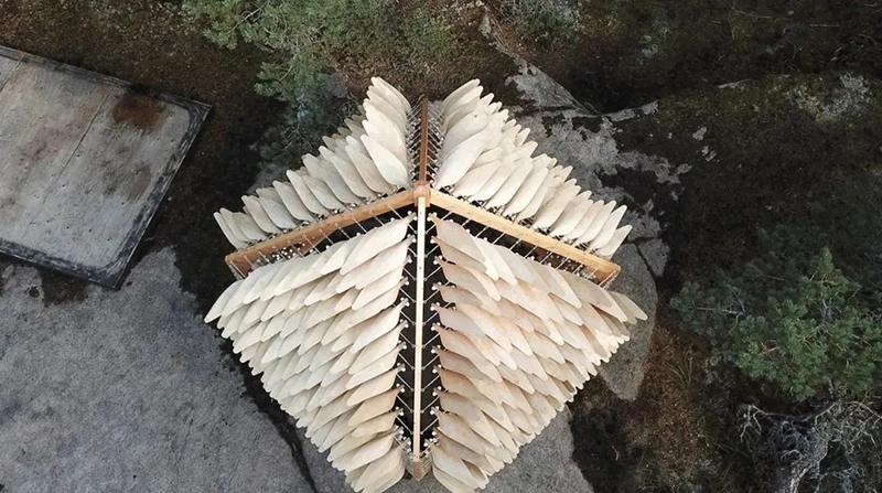 长羽毛的小屋